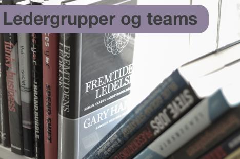 mindmanagement-vi-tilbyder-udvikling-af-ledergrupper-og-teams